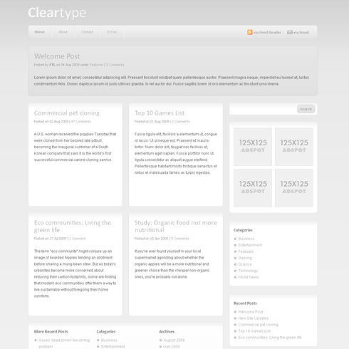 ClearTypeOne WP Theme