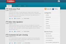 Craviora WordPress Theme