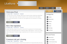 Literane WordPress Theme