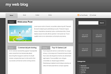 Misty WordPress Theme