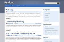 Pandora WordPress Theme