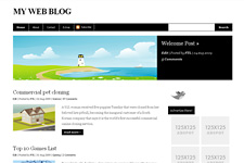 VividPoint WordPress Theme